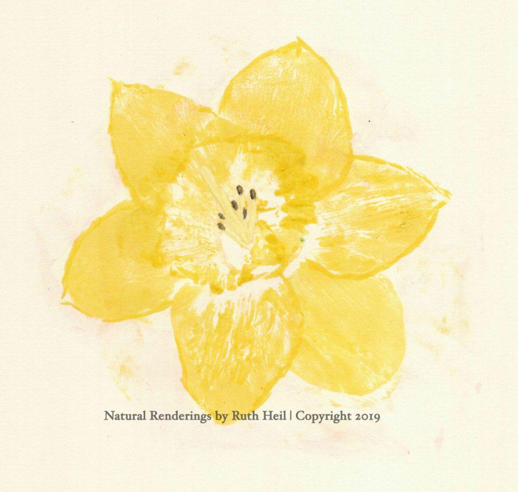 Dandelion Nature Print